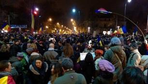 image-2014-11-16-18579291-0-protest-kiseleff