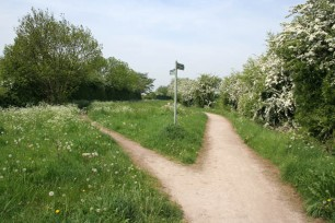 A_choice_of_public_right_of_way_-_geograph.org.uk_-_809502